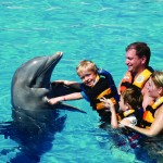 Looking to swim with the Dolphins? Moon Palace has it just for you! Get up close and personal with one of the most people-friendly marine species. Swimming with the dolphins is truly exhilarating, an activity that is sure to get the adrenaline pumping and is fun for all ages!