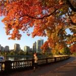 Stanley Park Vancouver Autumn