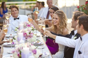 Beaches Resorts Wedding Toast