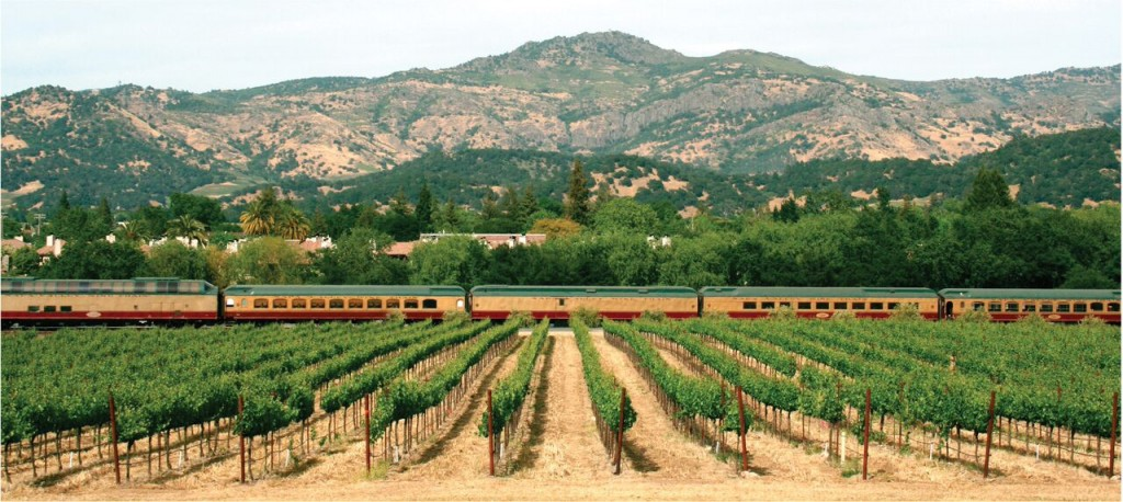 Wine-Train-Vineyards