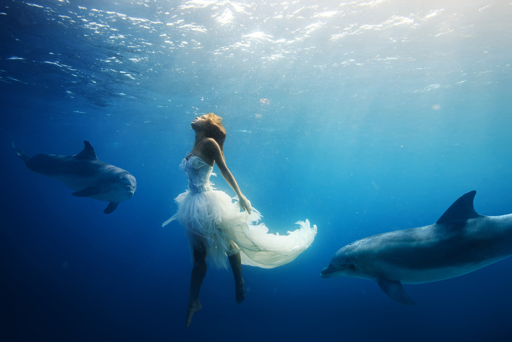 dolphin wedding dress
