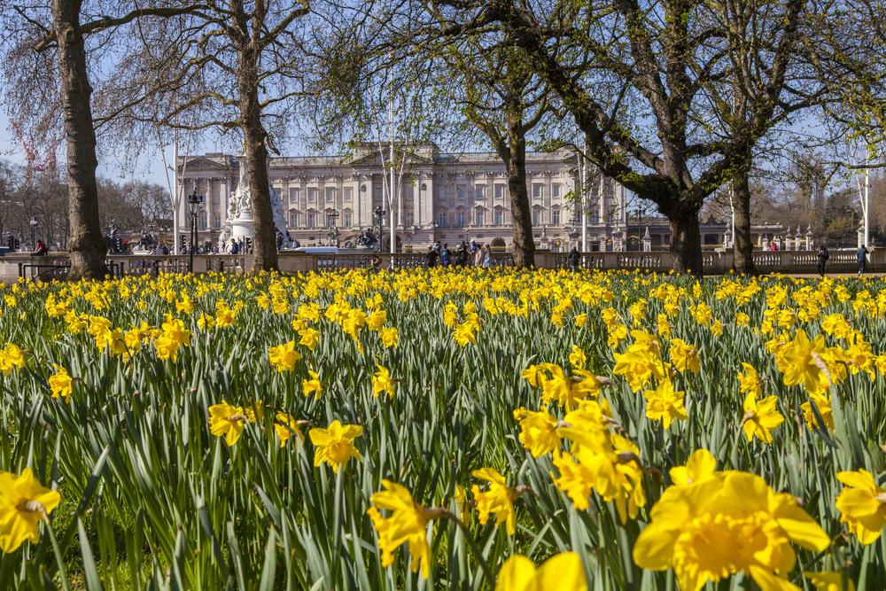 London Springtime