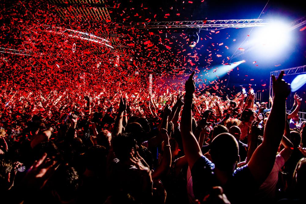 VIP Nightclub Crawl