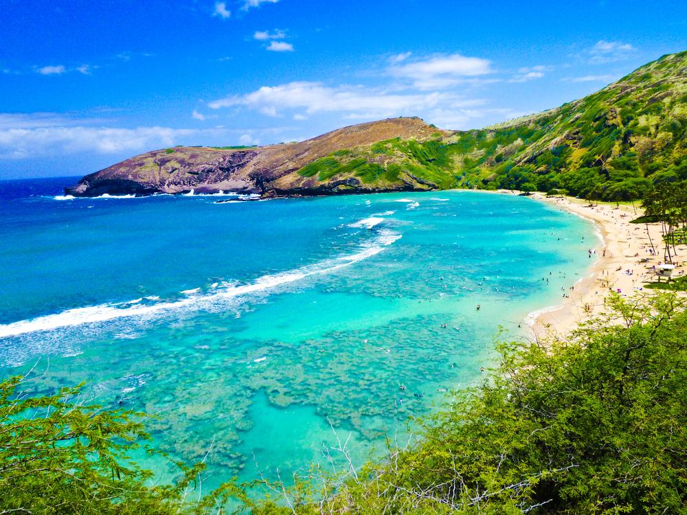 Hawaii's Fantastic Four