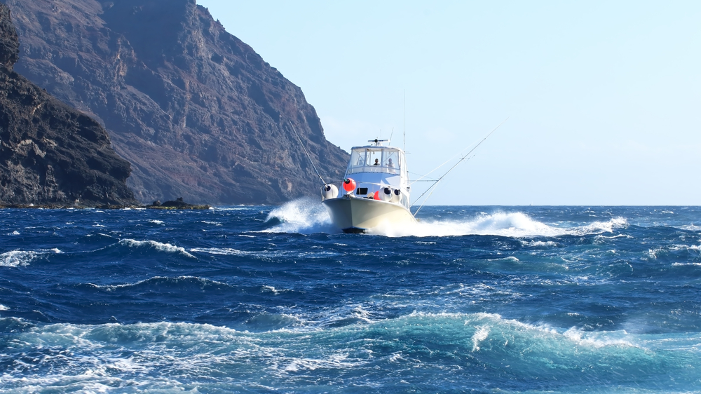marine fishing Los Cabos