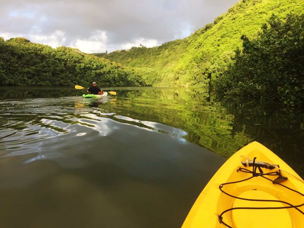 Whether by kayak, canoe, or paddle board, there's no wrong way to explore the Wailua River.